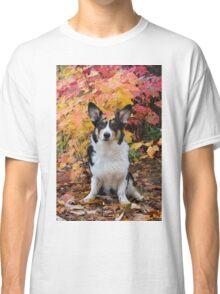 Yogi in Fall Colors Classic T-Shirt
