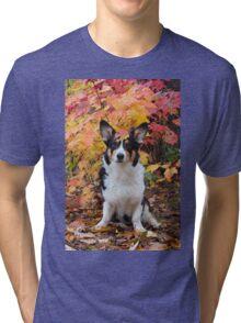 Yogi in Fall Colors Tri-blend T-Shirt