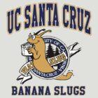 Santa Cruz Banana Slug Fiction by paperbear