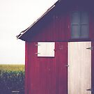 Red Barn by Olivia Joy StClaire