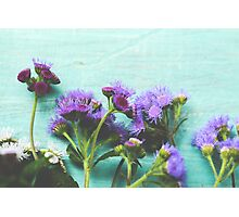 Summer Flowers Photographic Print