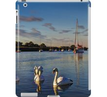 Summer evening swans iPad Case/Skin