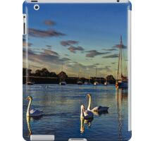 Graceful evening swans iPad Case/Skin
