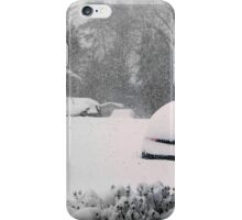 February 2016 - Virginia Storm iPhone Case/Skin