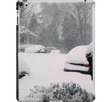 February 2016 - Virginia Storm iPad Case/Skin