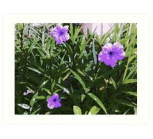 Pretty Purple Flowers Art Print