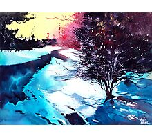 Icy Morning Photographic Print