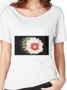 Gymnocalycium quehlianum v flavispinum Women's Relaxed Fit T-Shirt