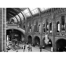 Inside the Natural History Museum Photographic Print