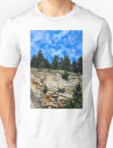 Colorado Contrast T-Shirt