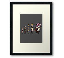 Final Evolution Framed Print