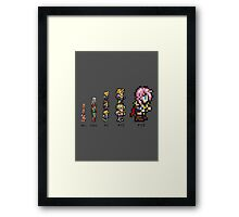 Final Evolution Framed Print