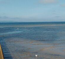 Seascape from a Scottish Pier Sticker