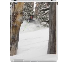 Solitude Trees iPad Case/Skin