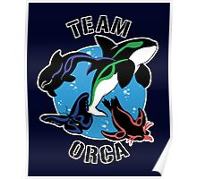 Team Orca Poster