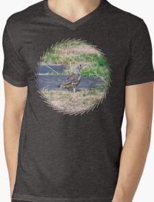 summer Visit Mens V-Neck T-Shirt