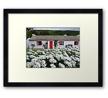 Irish Cottage With Daisies Framed Print
