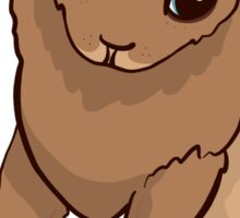 Adorable Baby Fur Seal Design Sticker