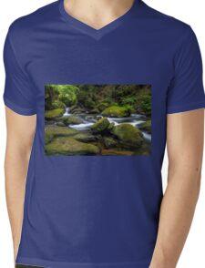 Whatcom Falls Creek Mens V-Neck T-Shirt