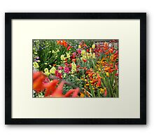 Flowers in an English Country Garden Framed Print