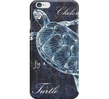 Indigo Verde Mar 2 iPhone Case/Skin