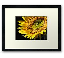The beauty of all things  Framed Print