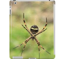 Yellow and White Spider on a Web iPad Case/Skin