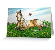 Spring Foal Greeting Card