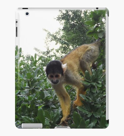 Spider Monkey iPad Case/Skin