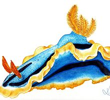 Nudibranch by Kaitlee Venable
