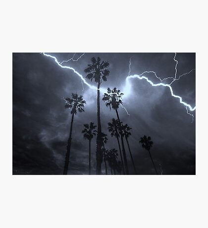 Palms & Lightning Photographic Print