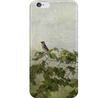 Moonlight on Cedar Waxwing iPhone Case/Skin