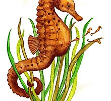 Seahorse Father by Kaitlee Venable