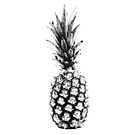 Halftoned Pineapple/Ananas by MrRock
