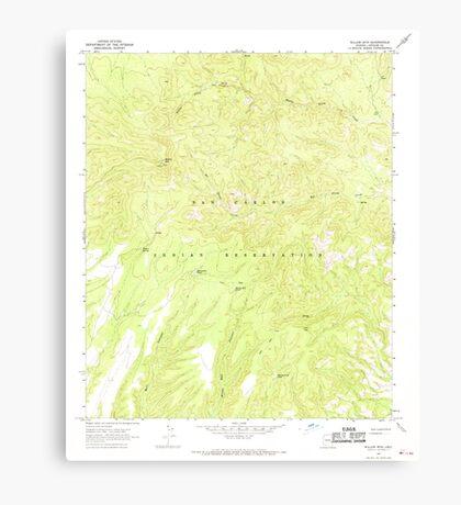 USGS TOPO Map Arizona AZ Willow Mtn 314130 1967 24000 Canvas Print