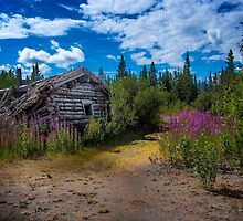 Silver City in July by Yukondick