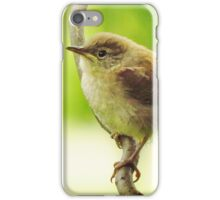 A Little Visitor iPhone Case/Skin