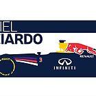 2014 Formula 1 RedBull Daniel Ricciardo Race Car by ApexFibers