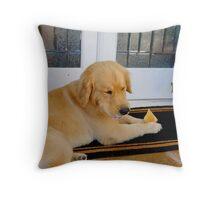 Barney 1 Throw Pillow