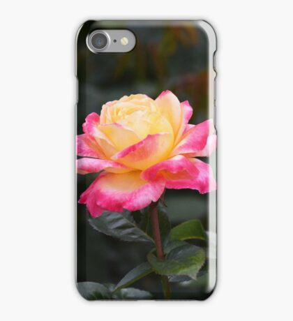Love and Peace Rose iPhone Case/Skin