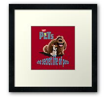 the secret life of pets  Framed Print