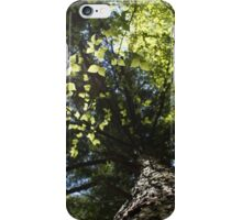 Reaching to the Sky iPhone Case/Skin