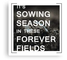 Sowing Season Canvas Print