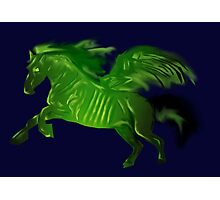 Green wing horse Photographic Print