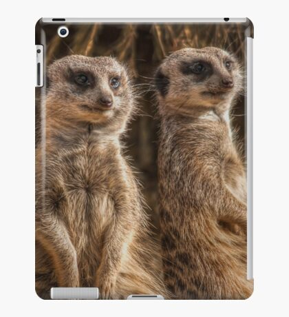 1100 The Two of us iPad Case/Skin