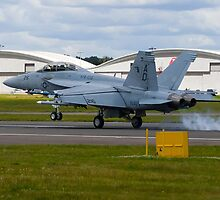 Super Hornet Touchdown by TomGreenPhotos