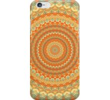 Mandala 38 iPhone Case/Skin