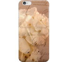 A Touch Of Cinnamon iPhone Case/Skin