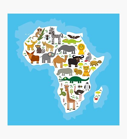 Animal Africa Continent Photographic Print