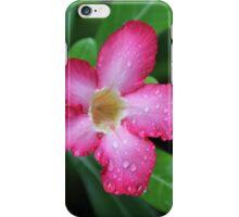 Lembongan Frangipani iPhone Case/Skin